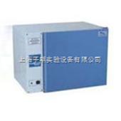DHP9272B电热恒温培养箱