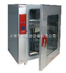 BPX272电热恒温培养箱