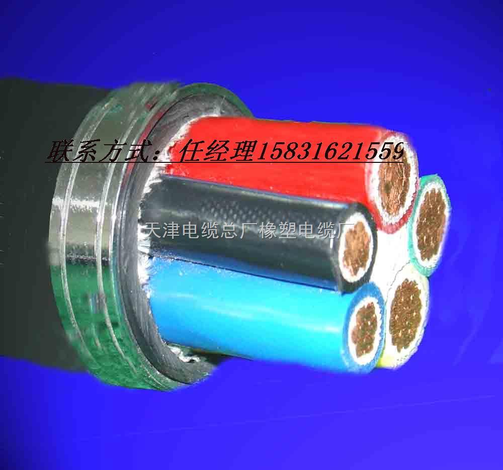 VV3 4电缆VV3 2.5铜芯电缆价格 小猫牌电缆.天津市电缆总厂橡塑电缆厂