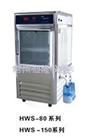 HWS-1200智能恒温恒湿培养箱厂家
