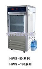 HWS-600智能恒温恒湿培养箱厂家