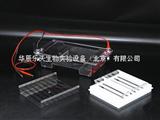 DYCP-31E北京六一琼脂糖水平电泳仪(槽)(中号)*代理