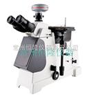 METAM LV金相顯微鏡