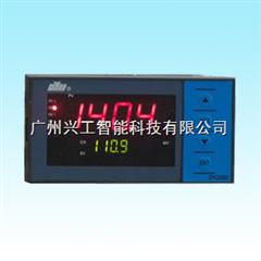 DY21AI10P自整定PID调节仪DY21AI10P