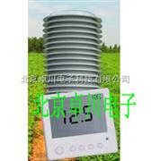 智能温湿度二氧化碳记录仪_温湿度二氧化碳记录仪_北京智能温湿度