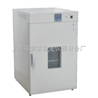 DHG-9240A恒溫鼓風干燥箱