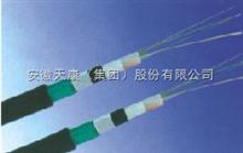 GYTY53型号光缆