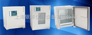 DH2500A电热恒温培养箱