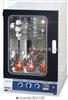 Combi-SV120韩国FINEPCR 分子杂交箱