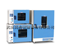 DHG-9023A高温精密烘箱