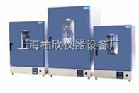 DGG-9036A立式300度电热恒温鼓风干燥箱老化箱 恒温箱 老化试验箱