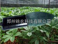 JN-YMS叶面湿度传感器
