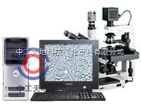 LBT-37XB-DMLBT-37XB-DM数码显微图像分析系统