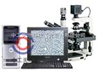 LBT-37XB-DM数码显微图像分析系统