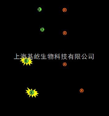 荧光定量PCR检测技术服务-Taqman探针法
