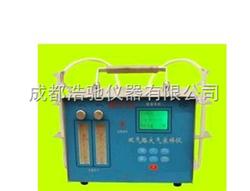 DCY-2A双气路大气采样器