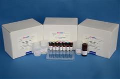 馬生長激素(GH)ELISA試劑盒
