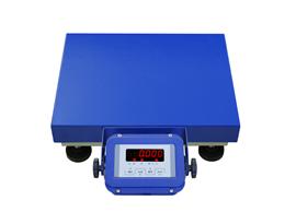 TCS-A12E100千克便携式电子台秤