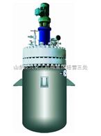 齐全不锈钢高压反应釜 龙兴不锈钢反应釜 烟台高压反应釜
