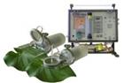 植物光合生理及环境监测系统