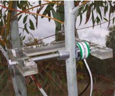 植物茎杆水势计