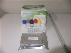 ?#25628;?#26643;素A2(TX-A2)ELISA试剂盒