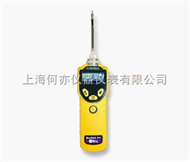 MiniRAE 3000 VOC检测仪PGM-7320