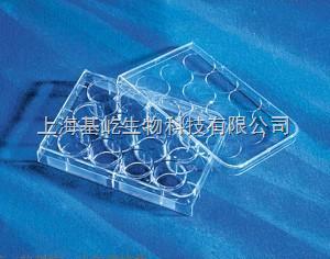 Corning  12孔细胞培养板