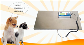 15KG寵物電子秤