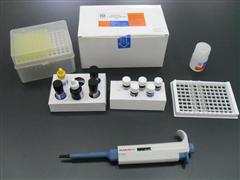 小鼠铁蛋白酶免试剂盒,(FE)ELISA检测试剂盒