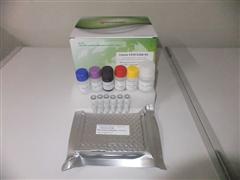 豬Ⅲ型前膠原氨基端肽酶免試劑盒,(PⅢNT)ELISA檢測試劑盒