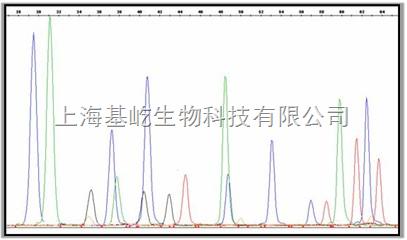 SNP检测服务    DNA测序法