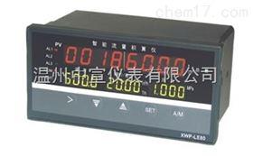 XMJA-911300VCPT流量积算仪价格
