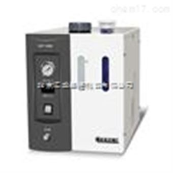 HLPT-300H/ 500H Prec色谱用氢气发生器