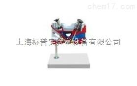 气缸盖解剖模型-3气门发动机|汽车解剖实训装置