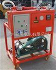 JBJBSF6气体抽真空及回充装置