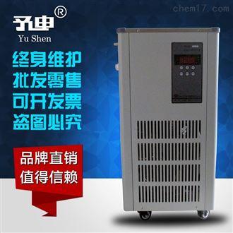 DLSB-5L/120℃低溫冷卻液循環泵