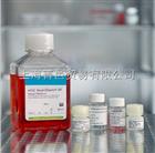 以色列Bioind进口 04-400-1A 金牌间充质干细胞专用胎牛血清500ml