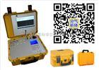GC-9850便携式LNG热值分析仪(自动型)