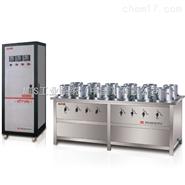 ZKS3000-B系列高精度抗滲儀