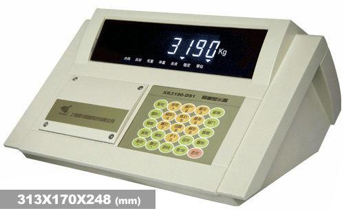 上海XK3190—DS2稱重顯示器