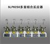 SLP6250多釜组合反应器