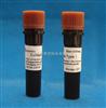 Sigma货号C0130胶原酶Ⅰ CollagenaseⅠ  CAS#: 9001-12-1