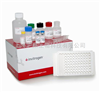 大鼠白三烯B4(LTB4)ELISA试剂盒