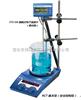 加热磁力搅拌器(RCT基本型)