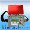 HR/VW-403C LN-1027-V便携式振弦读数仪 弦式便携式读数仪价格