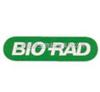 美国Bio-rad伯乐Trans-Blot SD 半干转印槽