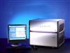 羅氏480熒光定量PCR儀