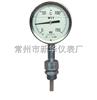 WTYZ充油耐震温度计