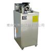 YXQ-LS-50A内排式压力蒸汽灭菌器